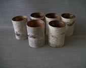 Birch Bark Vases (6)