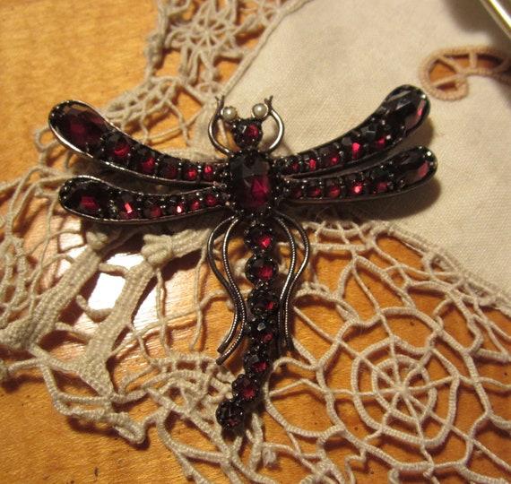 Edwardian Faceted Bohemian Garnet Dragonfly Pin, Rare find