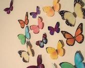 3D Butterflies,Wall Art, Spring, Hand Painted, FREE SHIPPING wedding, nursery, mother