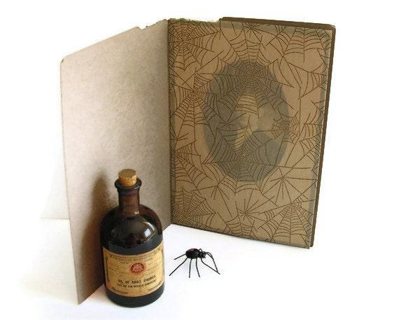 Spiderweb Veiled Antique Photo Handsome Mystery Man Halloween Decor