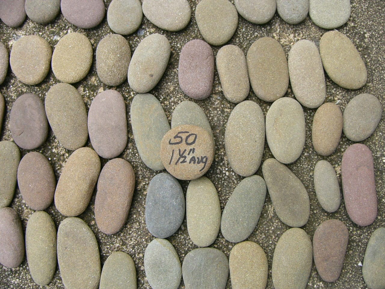 50 small river rocks long oval shape stones writing names for Small river pebbles