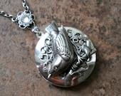 Wren Locket, Silver Bird Locket, wren, locket, silver bird, bird locket, bird, silver locket