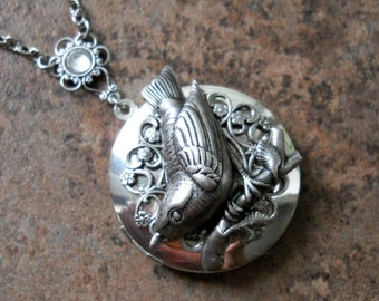 Wren Locket, Silver Bird Locket, wren, locket, silver bird, bird locket, bird, silver locket