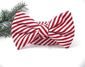 Christmas Bow Tie Dog Collar - Peppermint Stick - Nickel Hardware