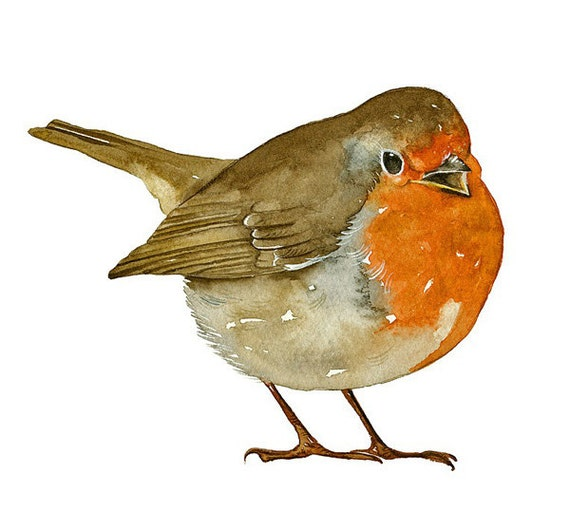 Robin Bird Art Print of my original watercolor painting limited edition