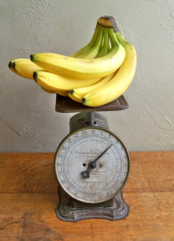"""Perfectly Distressed Columbia Family Kitchen Scale """"Farmhouse Chic Charmer"""""""