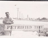 Vintage Photo - Man By Petrified Tree Sign - Vintage Photograph (A) Vernacular, Found Photo