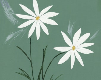 White Daisies With Green Background Giclee Canvas Print 9 x 12