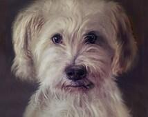 Custom Dog Portrait Framed 7 x 8.5 inches