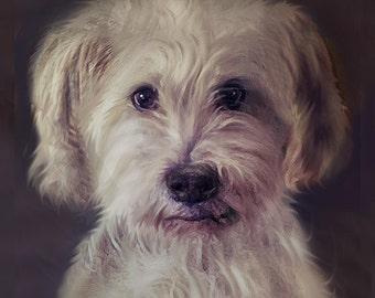 Custom Dog Portrait Framed 8 x 10 inches