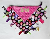 PERSONALIZED Owls Ribbon Tag Sensory Blanket With Pacifier Leash Large 16 x 16 - Pink Minky