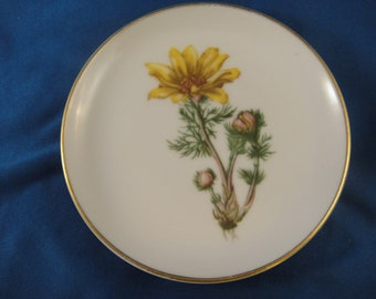 Trinket Dish Coaster Small Plate Yellow Flower Rosenthal Germany