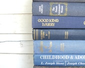 Blue Books Instant Library Book Collection by Color Bundle Photography Props  Vintage Decorative Books Medium