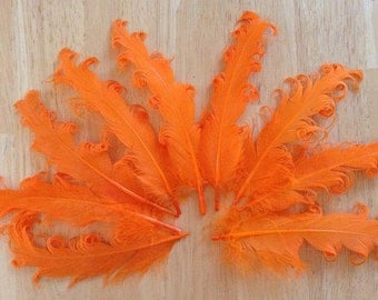 3 Loose Nagorie Feathers - Orange