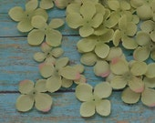 Silk Flowers - 100 Hydrangea Blossoms in Apple Green Accented with Pink - Artificial Flowers