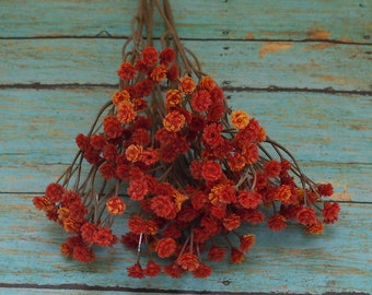 ORANGE Plastic Baby's Breath - Gypsophila - Artificial Flowers, Greenery, Filler