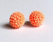 Peach orange chrysanthemum earrings on silver colour studs with ivory gift bag