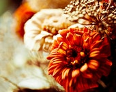 Photo of Autumn Flowers - Fine Art Photo Entitled Fall's Flowers -  8 X 10