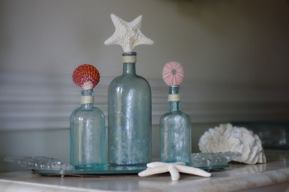 Beach Decor Vintage Set of 3 Aqua Glass Bottles with Starfish, Scallop Shell and Sea Urchin