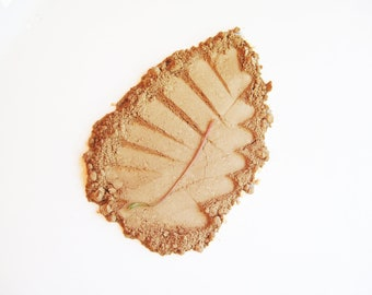 Butterscotch - Pure and Natural Mineral Eye Shadow
