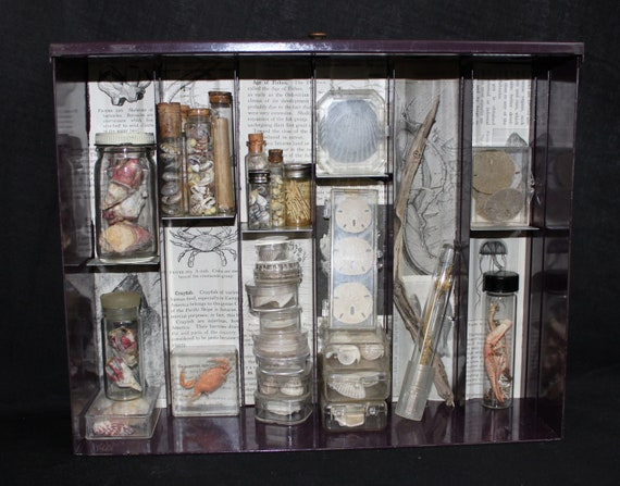 RESERVED Listing for Denise Beach Apothecary Mixed Media Shadowbox Assemblage
