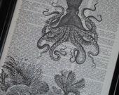 BOGO SALE Sea Life Art Print Ocean Art Print Dictionary Art Print Octopus Sea Floor Art Print  Wall Art A HHP Original Design 8 x 10 Print 3