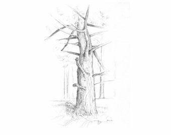 "Tree Waiting print of pencil drawing  8""x10"""
