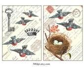 birds - 5x7 inch digital download image printable vintage postcard collage sheet image fabric transfer card gift hang tag label
