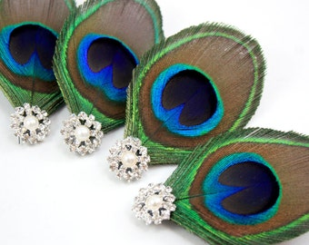 4 Peacock Bridesmaid Clips - Set of 4 Fair hair accessories / Bridesmaid fascinators