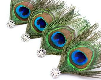 4 Peacock Clips - Set of 4 Wild peacock fascinators / Peacock Bridesmaid hair clips