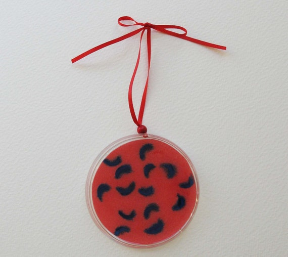 Petri Dish Ornament H5: Red with Blue Bacteria