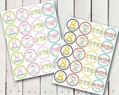 LDS Baptism Cupcake Toppers Boy, Girl or Rainbow Personalized Printable DIY