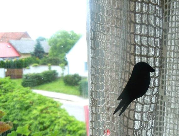 Petit swallow