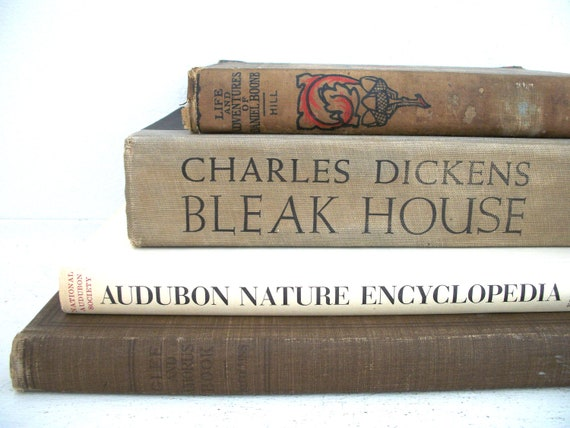 Vintage Collection of Books- Cottage Collection