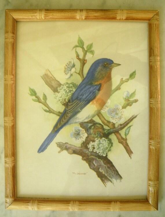 Vintage Blue Bird Bamboo Framed Bird Print Signed By