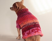 Oh No - I'm a Boy Chihuahua in a Pink Roll Neck Sweater, XS