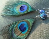 Peacock Feather and Freshwater Pearl Dangle Earrings
