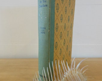 Vintage Bobbsey Twins at the Seashore yellow and green Childrens Book