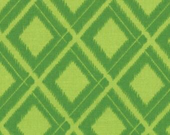 Simply Color Lime Green Ikat Diamonds 10806 - 18