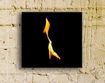 Fire Series:  Le Colibri, 10x10 thinwrap, ready to hang