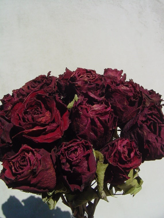 15 Dark Red Dried Roses - Natural Color - Deep Red - Herbs for Spells - Roses for Luck, Love, Romance