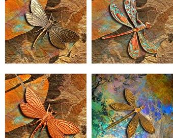 Dragonflies Large 4 Inch Square Instant Download Digital Images Collage Sheet JPEG (12-43)