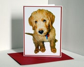 Puppy Dog Blank Card, Note Card, Greeting Card, Photo Card/s