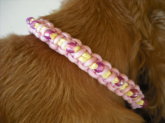 Pink and Yellow Dog Collar Unique Dog Jewelry