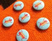 Fart Dog Buttons