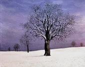 Purple winter- original acrylic landscape painting