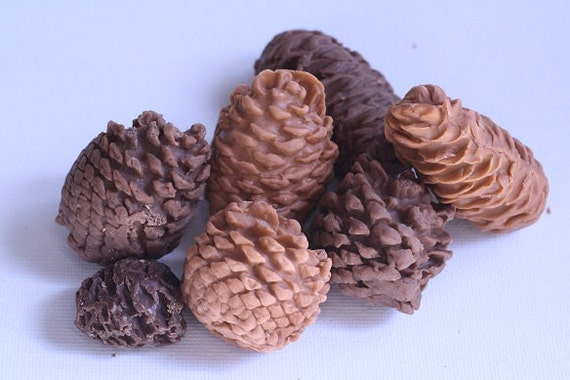 10 Gumpaste pine cones for cake decorating by ACakeToRemember