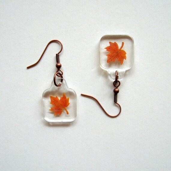 Autumn Earrings - Charmed Real Maple Leaf Earrings