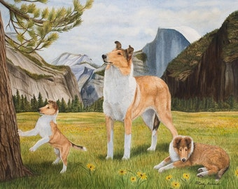 "Limited edition Collie print ""Dreams of Splendor"" by Cindy Alvarado"