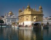 The Golden Temple Amritsar Punjab India 8X10 Photograph